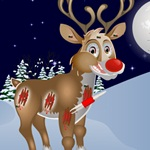Christmas Reindeer Care