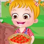 Hazel Tomato Farming