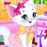 Kitty Salon